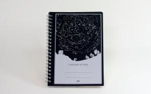 オリジナル観察ノート